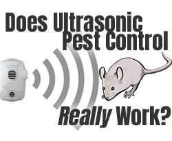 Ultrasonic Pest Control Units for Rodents