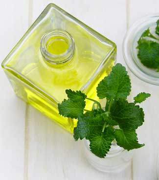 Peppermint Essential Oil to Get Rid fo Mice Naturally