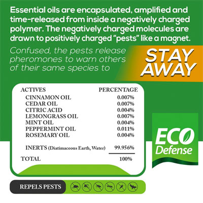 Natural Essential Oil Ingredients in Eco Defense Stay Away Rodent Repellent Spray